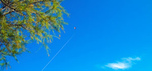 Clean Monday kite